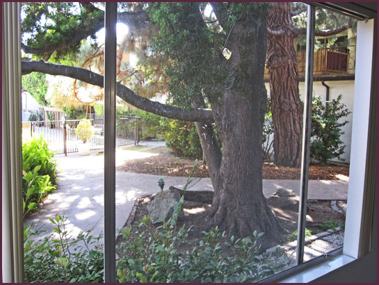 Courtyard view from window